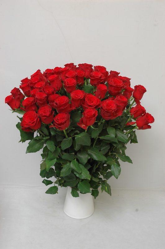 Skintos rožės